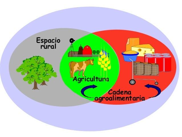 Espacio rural Agricultura Cadena agroalimentaria