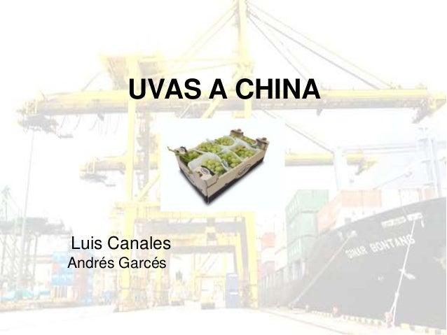 UVAS A CHINALuis CanalesAndrés Garcés
