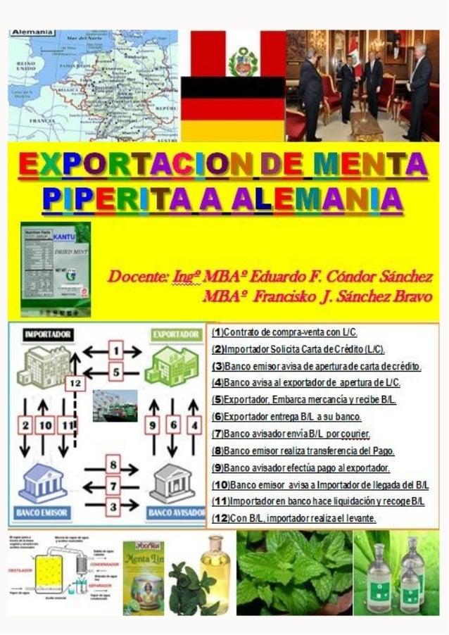 [EXPORTACION DE MENTA PIPERITA] 29 de septiembre de 2011D o c e n t e s : E d u a r d o C ó n d o r / F r a n c i s c o S ...