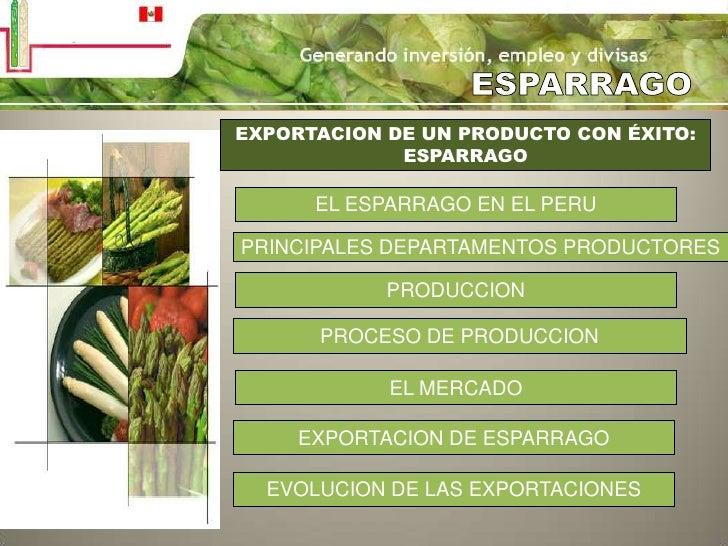 ESPARRAGO<br />EXPORTACION DE UN PRODUCTO CON ÉXITO:<br />ESPARRAGO<br />EL ESPARRAGO EN EL PERU<br />PRINCIPALES DEPARTAM...