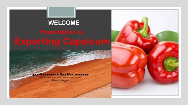 WELCOME Presentation on Exporting Capsicum