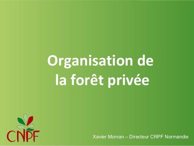 Organisation de la forêt privée  Xavier Morvan – Directeur CRPF Normandie