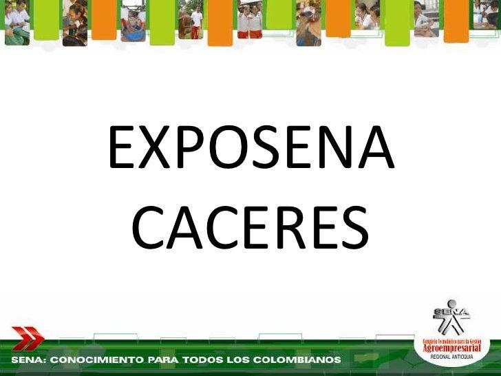 EXPOSENA  CACERES