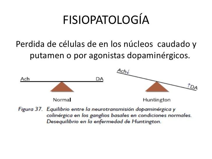 FISIOPATOLOGÍA<br />Perdida de células de en los núcleos  caudado y putamen o por agonistas dopaminérgicos.<br />