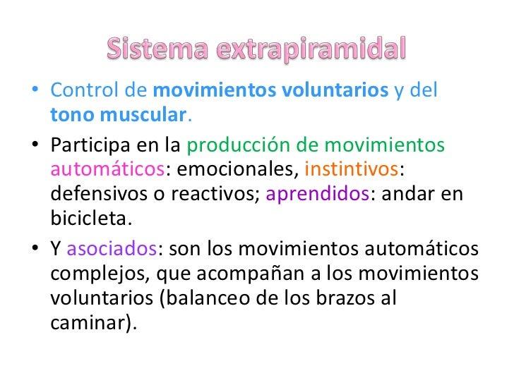 Sistema extrapiramidal<br />Control de movimientos voluntarios y del tono muscular.<br />Participa en la producción de mov...