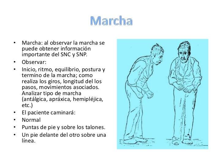 Tono muscular <br />Evaluar el tono muscular:<br />Posición del miembro en reposo<br />Palpación de la masa muscular<br />...