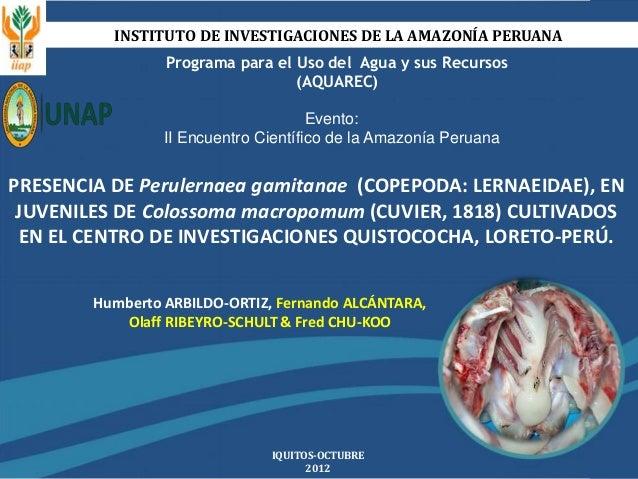 INSTITUTO DE INVESTIGACIONES DE LA AMAZONÍA PERUANA Programa para el Uso del Agua y sus Recursos (AQUAREC) IQUITOS-OCTUBRE...