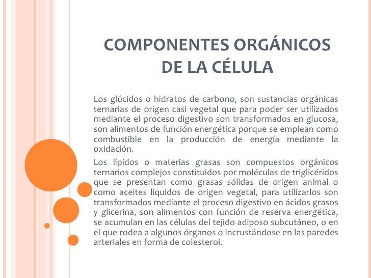 COMPONENTES ORGÁNICOS       DE LA CÉLULALos glúcidos o hidratos de carbono, son sustancias orgánicasternarias de origen ca...