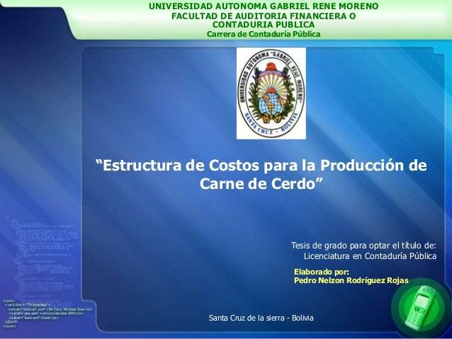 UNIVERSIDAD AUTONOMA GABRIEL RENE MORENO FACULTAD DE AUDITORIA FINANCIERA O CONTADURIA PUBLICA Carrera de Contaduría Públi...