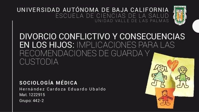 DIVORCIO CONFLICTIVO Y CONSECUENCIAS EN LOS HIJOS: IMPLICACIONES PARA LAS RECOMENDACIONES DE GUARDA Y CUSTODIA SOCIOLOGÍA ...