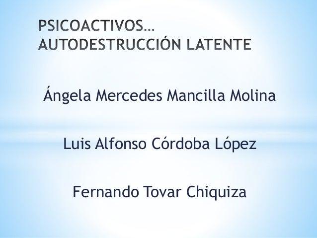 Ángela Mercedes Mancilla Molina Luis Alfonso Córdoba López Fernando Tovar Chiquiza