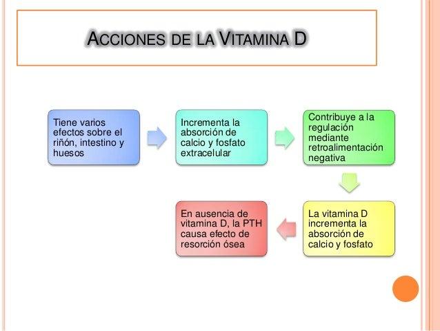 Hipo e hiperparatiroidismo Slide 3