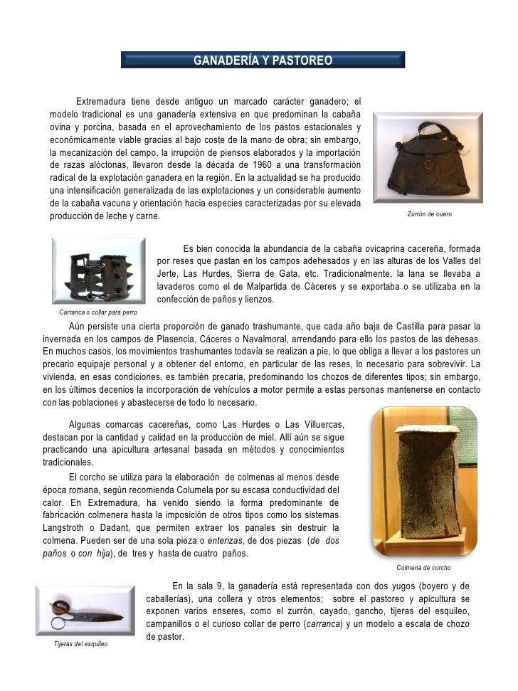 Exposición Permanente del Museo de Cáceres