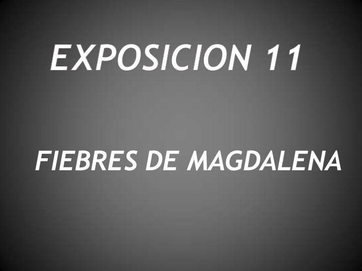 FIEBRES DE MAGDALENA