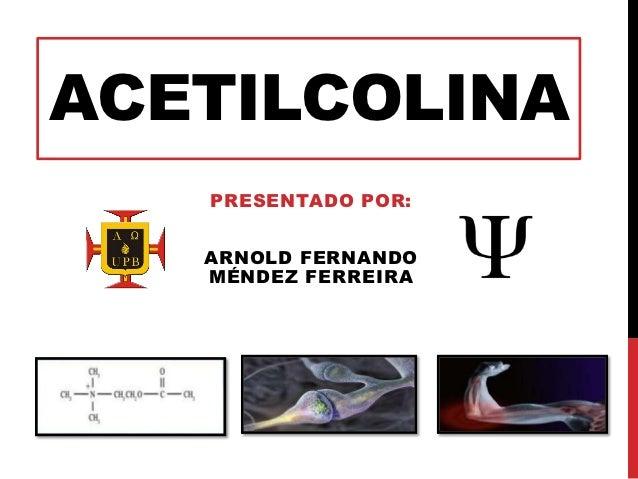 ACETILCOLINA   PRESENTADO POR:   ARNOLD FERNANDO   MÉNDEZ FERREIRA