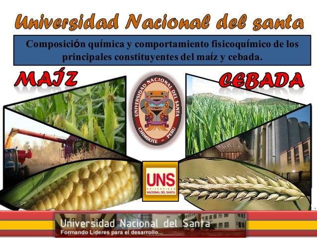 Composición química y comportamiento fisicoquímico de los principales constituyentes del maíz y cebada.