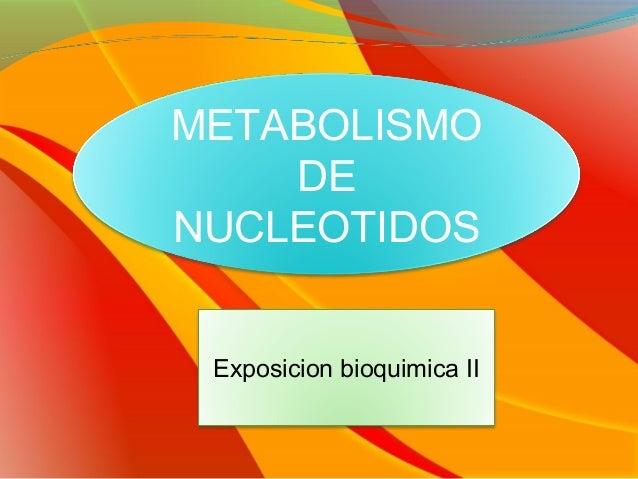 METABOLISMO    DENUCLEOTIDOS Exposicion bioquimica II