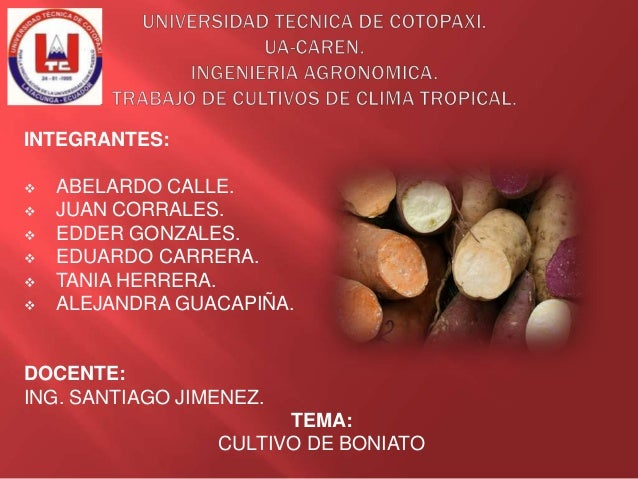 INTEGRANTES:        ABELARDO CALLE. JUAN CORRALES. EDDER GONZALES. EDUARDO CARRERA. TANIA HERRERA. ALEJANDRA GUACAPI...