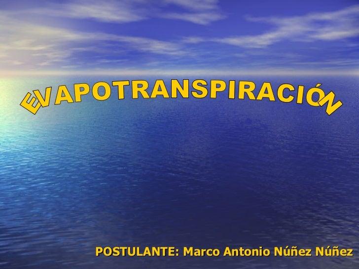 EVAPOTRANSPIRACIÓN POSTULANTE: Marco Antonio Núñez Núñez