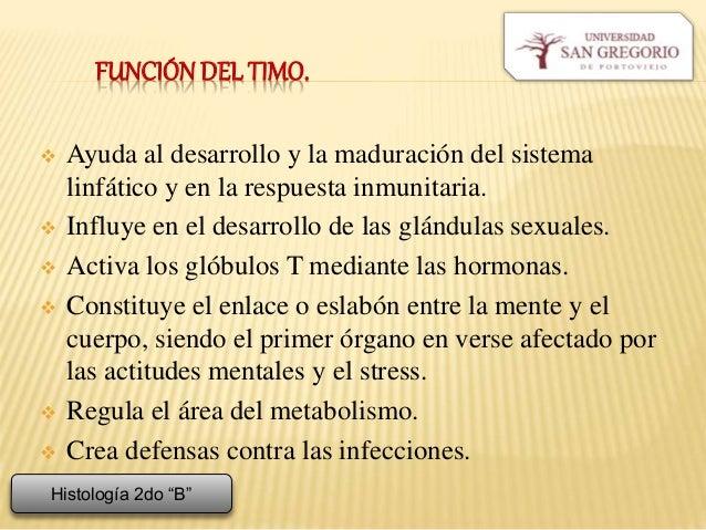 GANGLIOS LINFÁTICOS, TIMO Y BAZO.