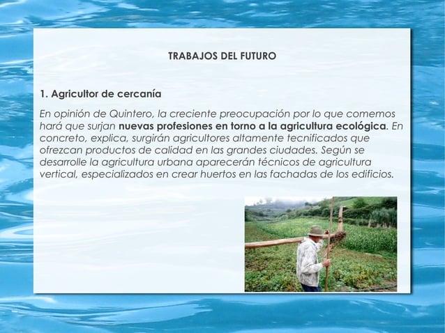 TRABAJOS DEL FUTURO 1. Agricultor de cercanía En opinión de Quintero, la creciente preocupación por lo que comemos hará qu...