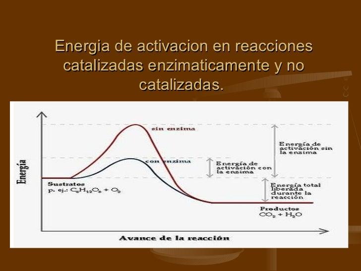 Energia de activacion en reacciones catalizadas enzimaticamente y no catalizadas.
