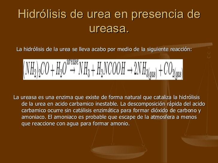 Hidrólisis de urea en presencia de ureasa. <ul><li>La hidrólisis de la urea se lleva acabo por medio de la siguiente reacc...