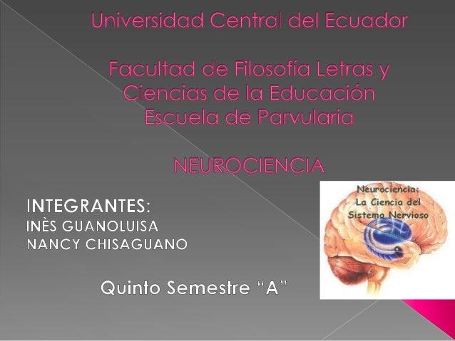  El objetivo principal de la Neurociencia escomprender como funciona el sistemanervioso central (SNC). La base de estudio...