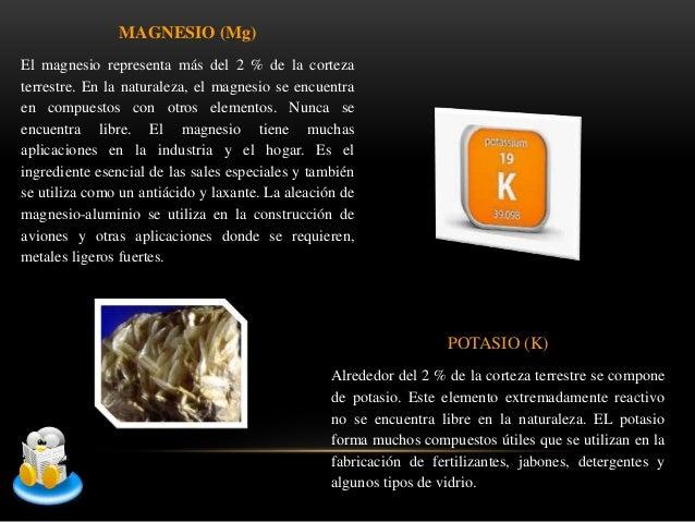 Abundancia de los elementos de la naturaleza - Alimentos que contienen silicio ...