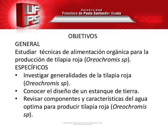 Seminario sobre alimentaci n org nica en tilapia roja for Tabla de alimentacion para tilapia roja