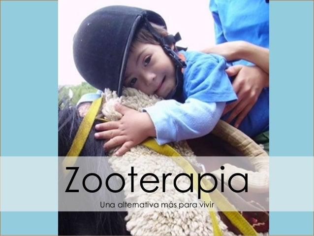 ZZooterapiaUna alternativa más para vivir