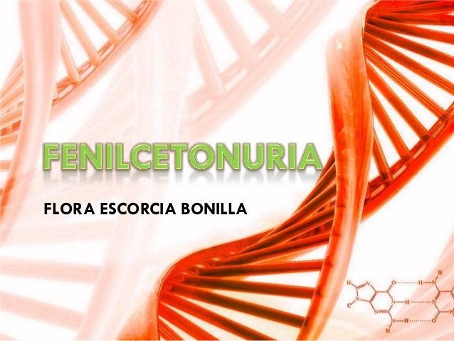 FLORA ESCORCIA BONILLA