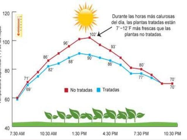 Temperatura - Plantas que aguantan temperaturas extremas ...