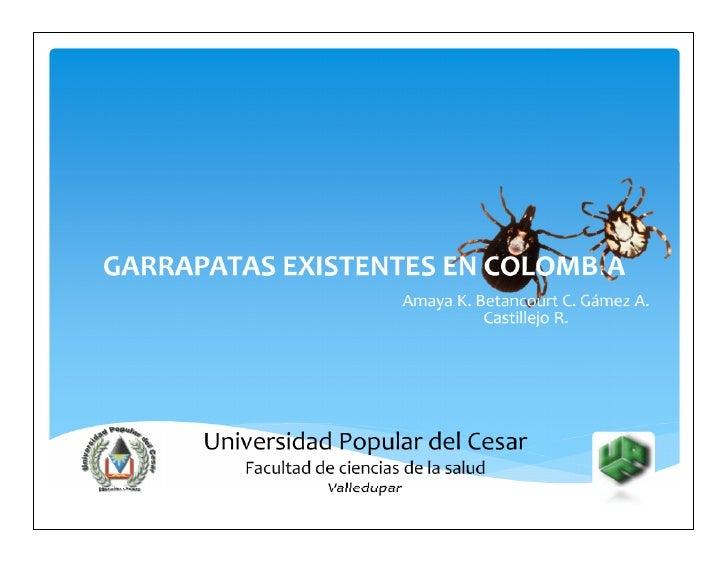 garrapatas existentes en colombia