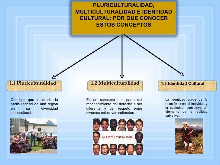 Pluriculturalidad definicion