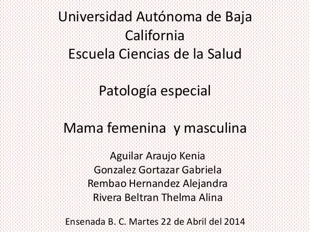 Universidad Autónoma de Baja California Escuela Ciencias de la Salud Patología especial Mama femenina y masculina Aguilar ...