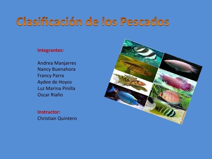 Clasificación de los Pescados<br />Integrantes:<br />Andrea Manjarres<br />Nancy Buenahora<br />Francy Parra<br />Aydee de...