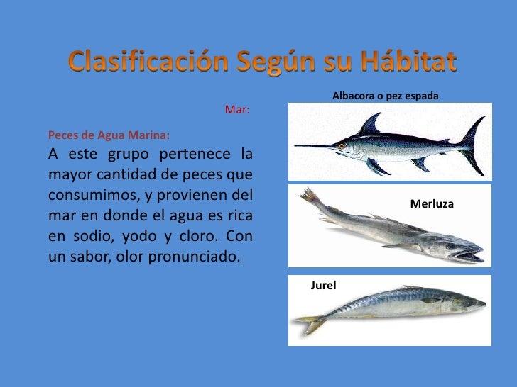 Pescados for Peces alimentacion