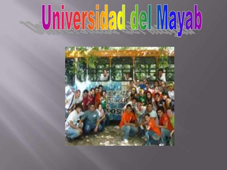 Fundada en 1997 Yucatán por José Luís Luna Martínez, en colaboración con Dora Ayora Talavera y Roció Chavestre los egresad...