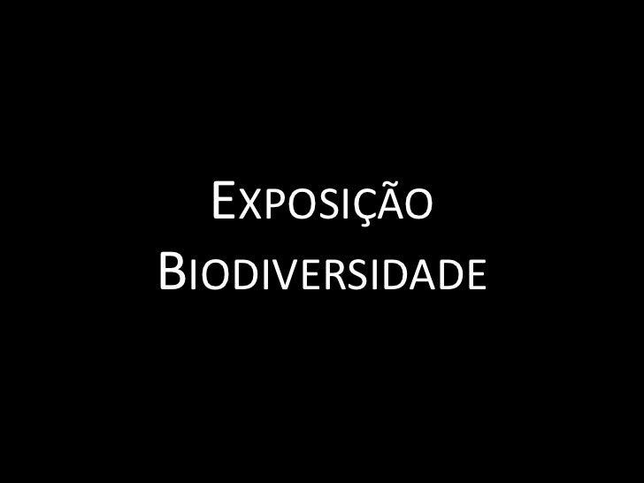 Exposição Biodiversidade<br />