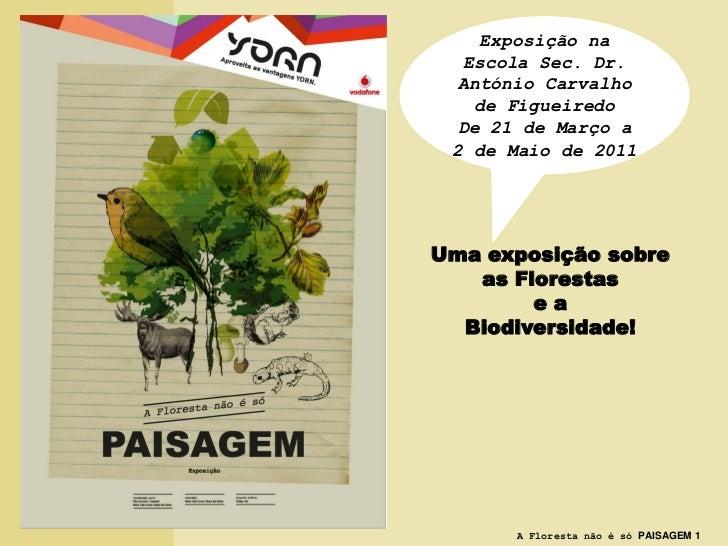 Exposição na  Escola Sec. Dr. António Carvalho   de Figueiredo De 21 de Março a 2 de Maio de 2011Uma exposição sobre   as ...