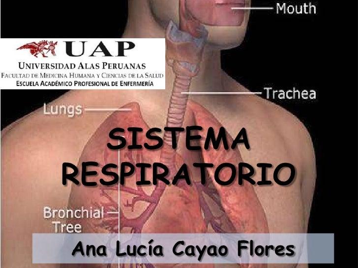 SISTEMARESPIRATORIOAna Lucía Cayao Flores