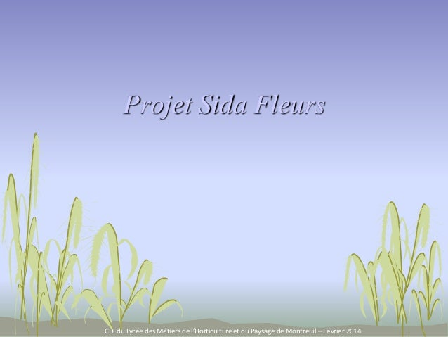 Projet Sida Fleurs CDI du Lycée des Métiers de l'Horticulture et du Paysage de Montreuil – Février 2014