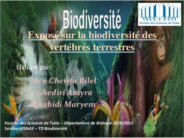 Exposé sur la biodiversité des vertébrés terrestres Ben Cherifa Bilel Ghediri Amyra Laabidi Maryem Faculté des Sciences de...