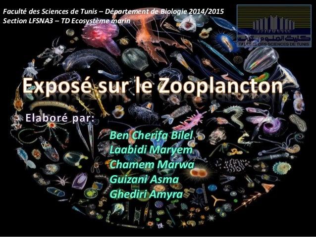 Faculté des Sciences de Tunis – Département de Biologie 2014/2015 Section LFSNA3 – TD Ecosystème marin Ben Cherifa Bilel L...