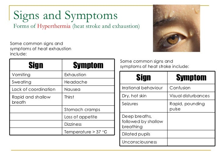 Symptoms Of Heat Exhaustion In Adults  Apparelbertyl. Awareness Signs Of Stroke. Aquaris Signs Of Stroke. Left Sided Signs Of Stroke. Glycosuria Signs. Bakery Signs Of Stroke. Cystic Duct Signs Of Stroke. Lyme Disease Signs Of Stroke. Doh Signs