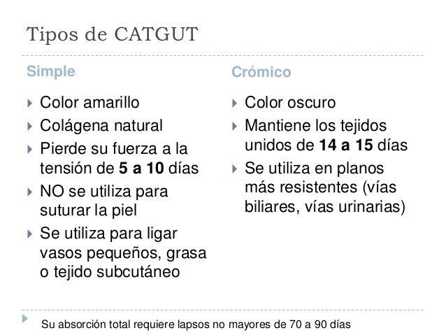 Tipos de CATGUT Simple Crómico  Color amarillo  Colágena natural  Pierde su fuerza a la tensión de 5 a 10 días  NO se ...