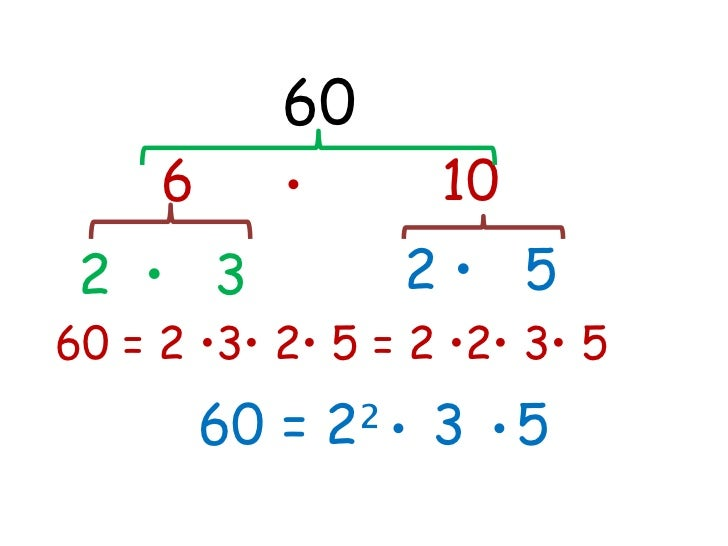 60     6     •       10 2 • 3           2• 560 = 2 •3• 2• 5 = 2 •2• 3• 5         60 = 2²• 3 •5