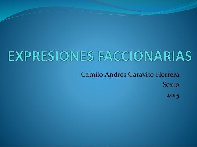 Camilo Andrés Garavito Herrera Sexto 2015