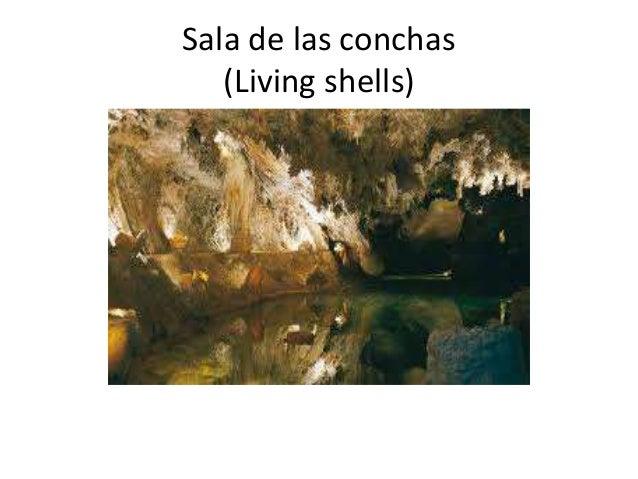 La gruta de las maravillas nuria d az for Sala maravillas